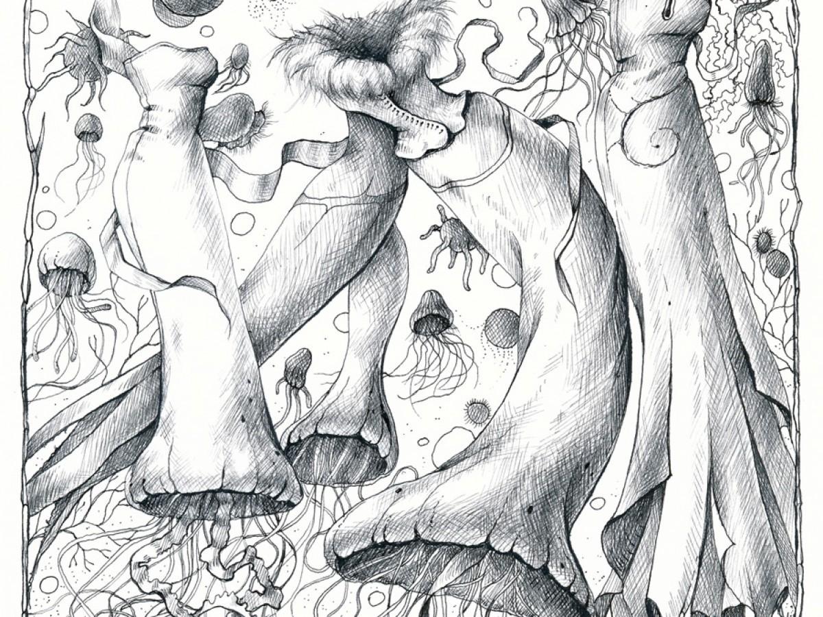 """Cover """"Salut L'Artiste"""" (Amécs) No 63"""