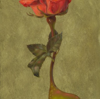 Ose ! Rose – 2011